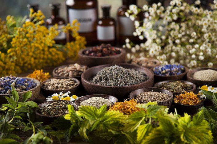 Niektoré zabudnuté a významné liečivé rastliny