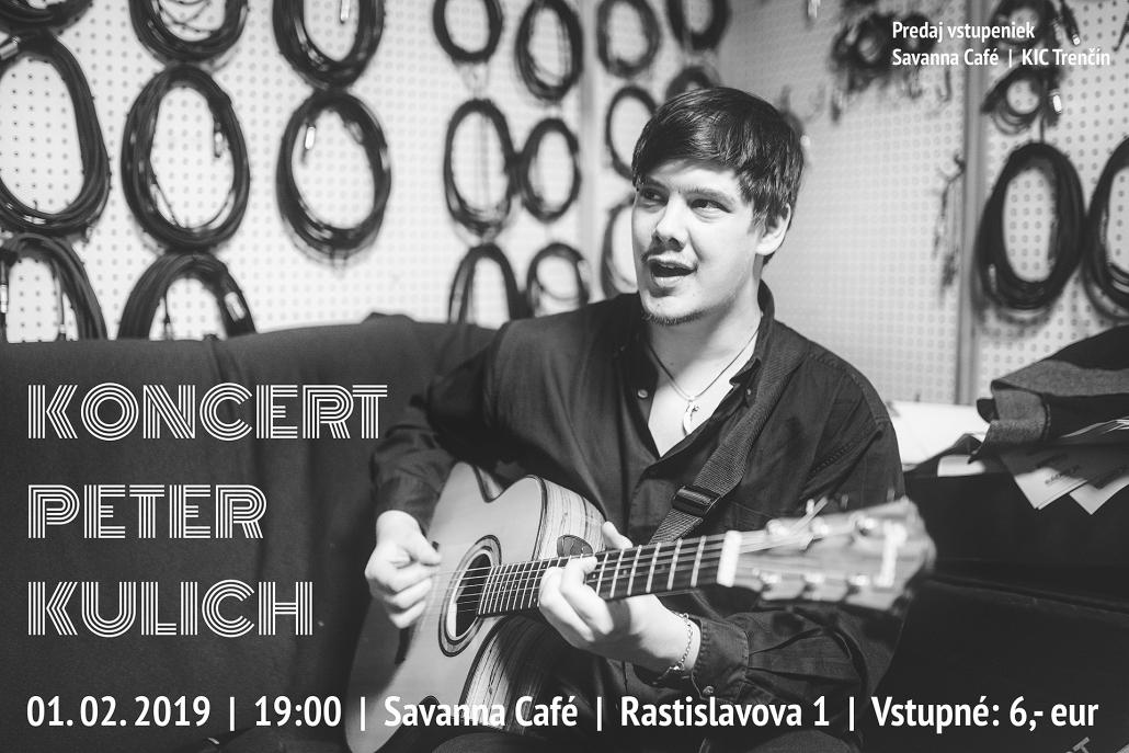 Koncert Petra Kulicha